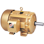 TEFC Frame Motor Electric - C Face Foot